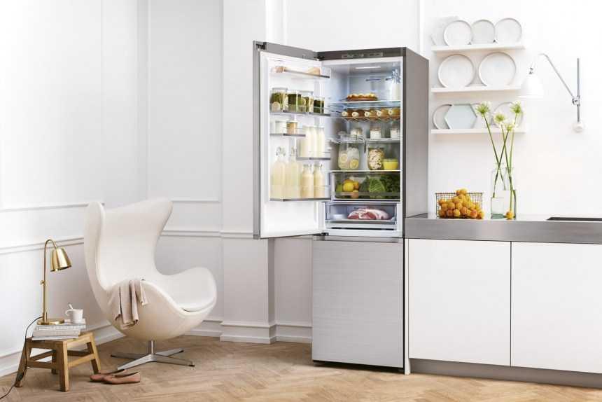 15 лучших однокамерных холодильников