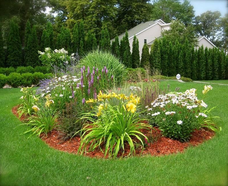 Про сочетания лилейников с другими цветами в ландшафтном дизайне