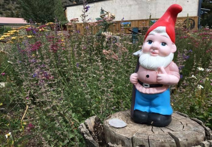Садовые гномы — 105 фото красивых фигурок и правила их размещения в саду и на участке