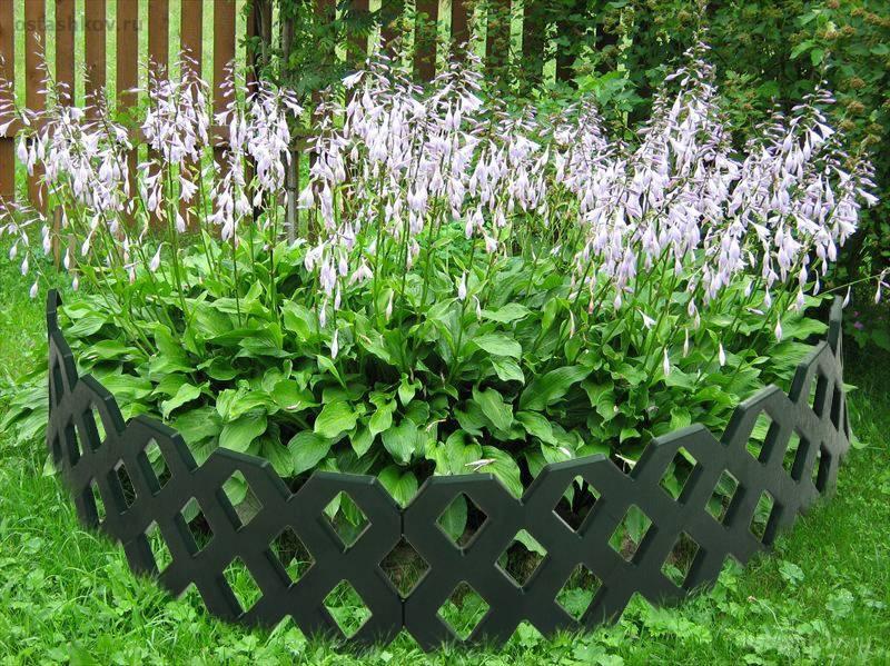 Декоративные заборы для сада (47 фото): особенности заборчиков для садовых участков, фото и видео