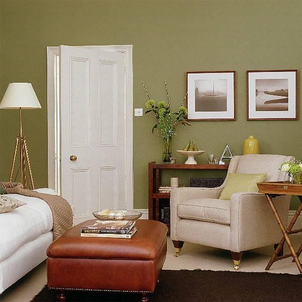 Оливковая гостиная: 100 фото модных решений дизайна