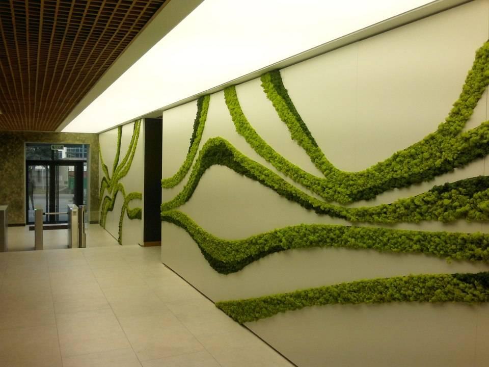 Как использовать мох в интерьере? (36 фото) – варианты применения и идеи дизайна